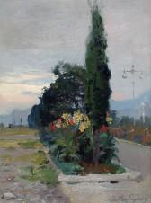 Цветы и кипарис