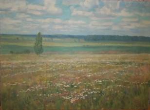 Июльское поле