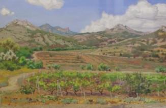 Виноградники в окрестностях Коктебеля
