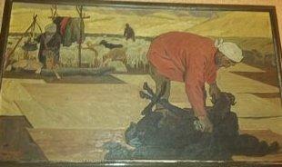 В горах. стрижка овец