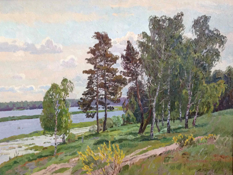 На озере Нигер Рязанской области