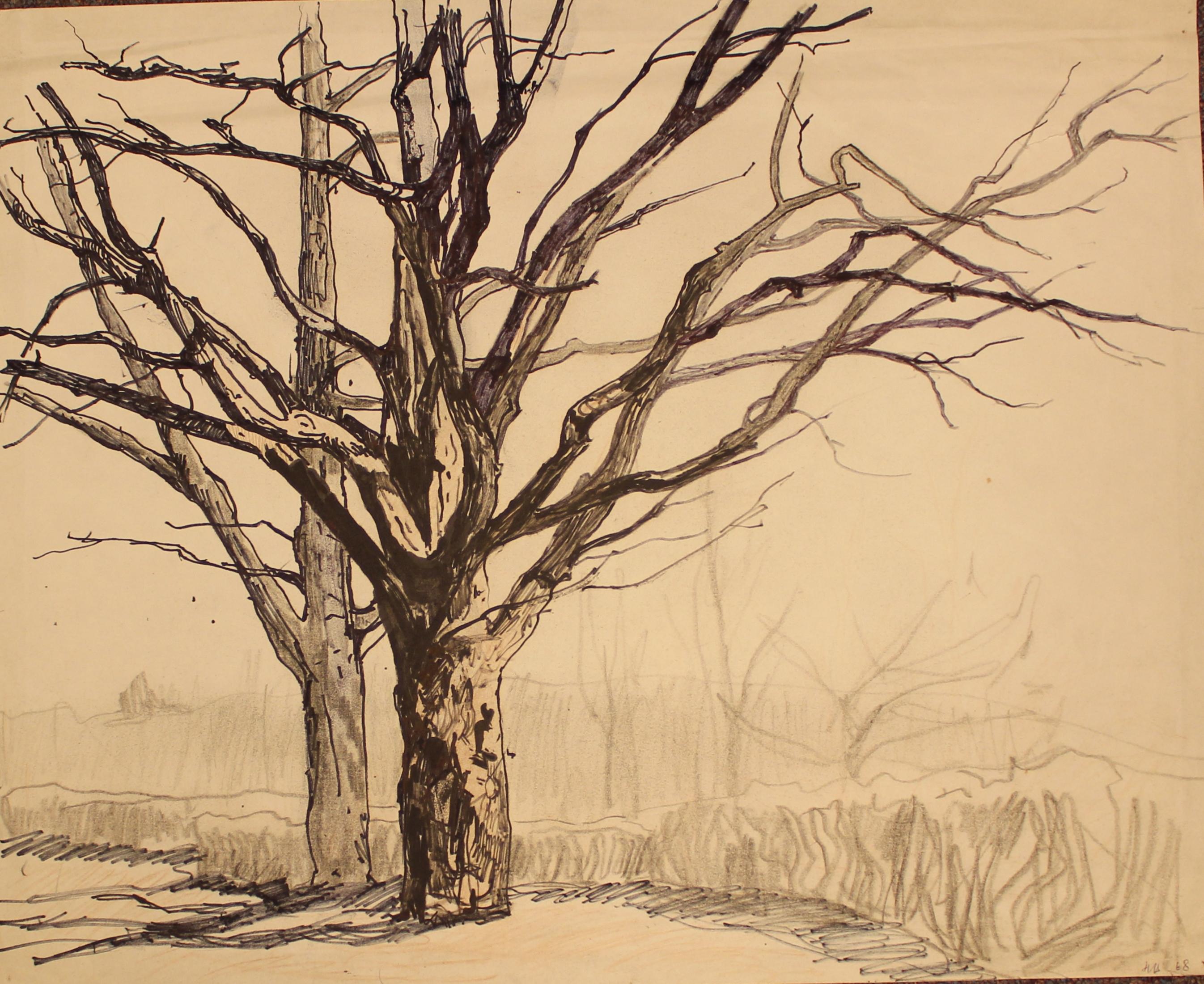 Дерево.Зима