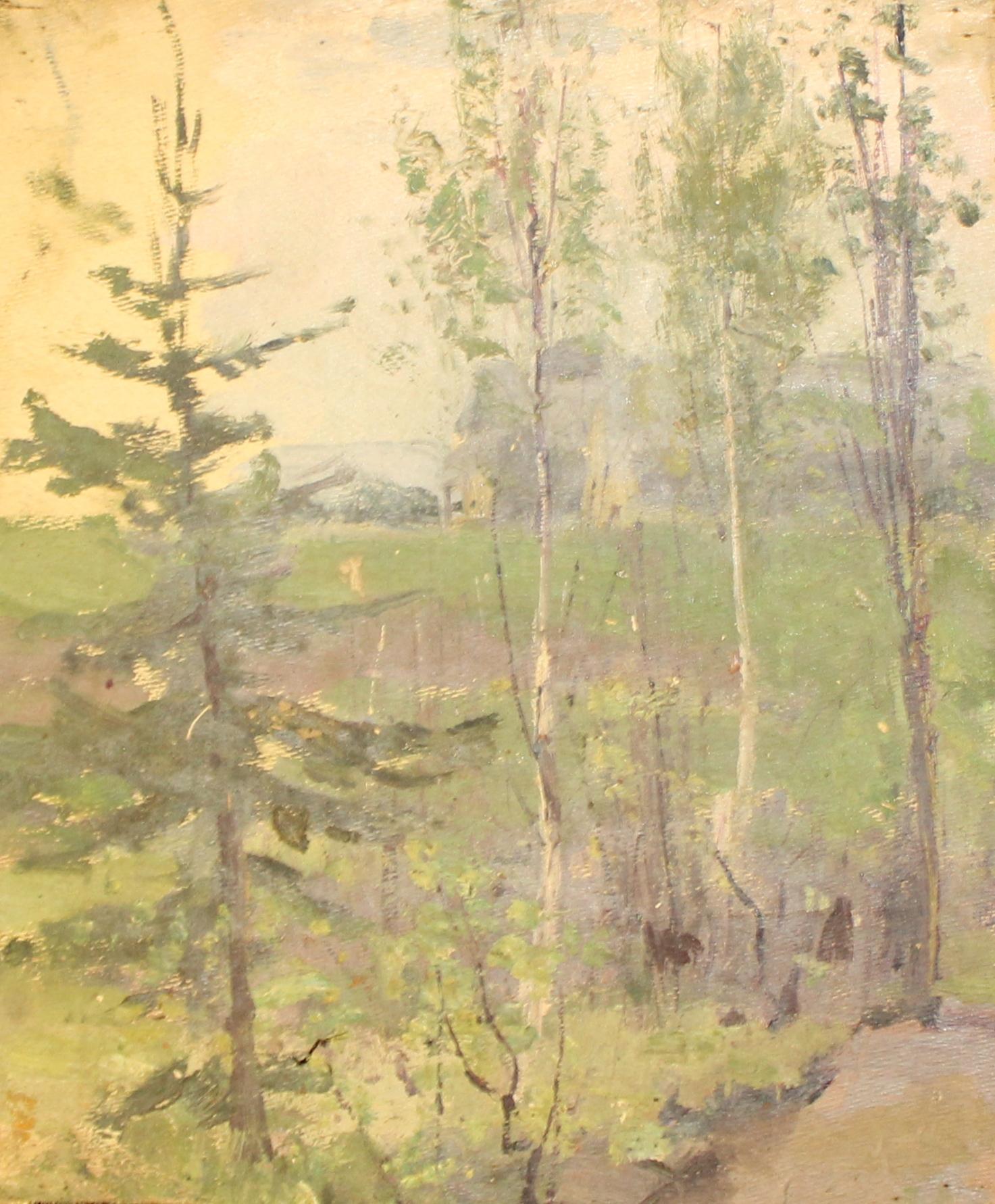 В лесу. Деревья