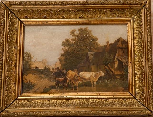 Коровы у околицы села