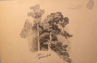 Лес (эскизный рисунок)
