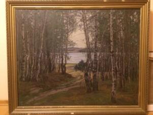 Вид на Рюмниковское озеро