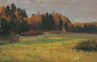 Дачные поляны
