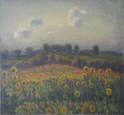 Подсолнуховое поле