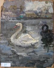 Пара лебедей. Москва