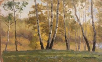 Осень в Петровском