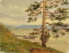 Сосна на берегу моря. Тольятти