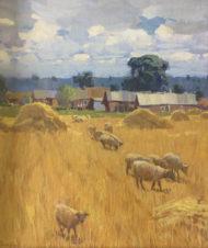Стога и овцы (Деревня Юркино)