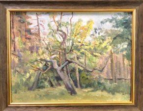 Эскиз. Старое дерево