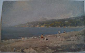 Хоста (дикий пляж)