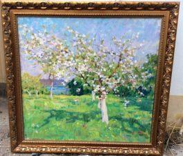 Когда яблоня цветет