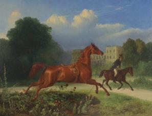 Убегающая лошадь