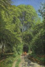 Мальчик с коровой в лесу