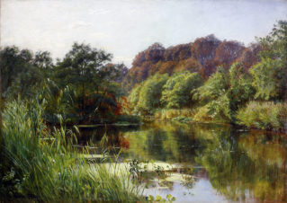 Лесной пейзаж с прудом