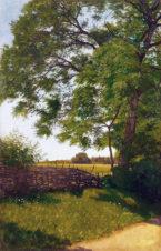 Пейзаж с плетнём
