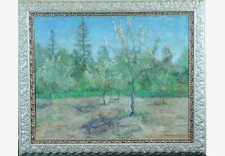 Цветущий май. Яблони