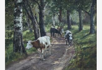 Стадо коров в лесу