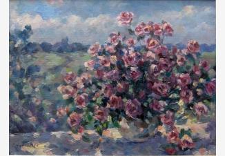 розы освещённые солнцем