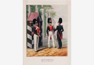 Императорская гвардия. Семеновский полк
